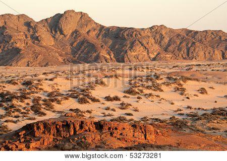 Desert landscape, Namib-Naukluft National park, Namibia, southern Africa