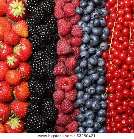 Fresh Berry Fruits Background