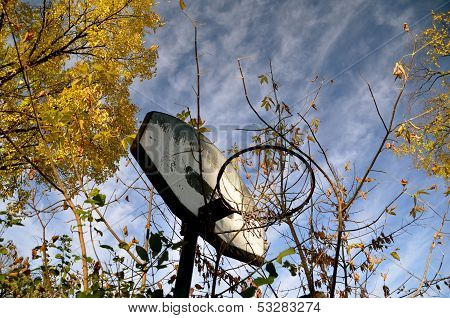 neglected basketball hoop