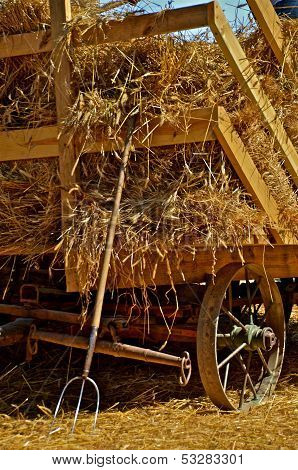 Load of bundles on the hayrack