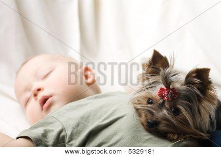 Bebé para dormir