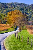 stock photo of cade  - Late afternoon on a winding country road in Cade - JPG
