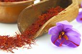 foto of saffron  - Dried saffron spice and Saffron flower - JPG