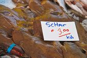 stock photo of flounder  - Sales of fresh flounder on the market - JPG