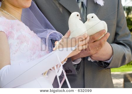 Married And Dove