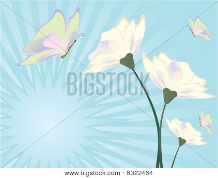 Flower And Butterfly Blue Background 2