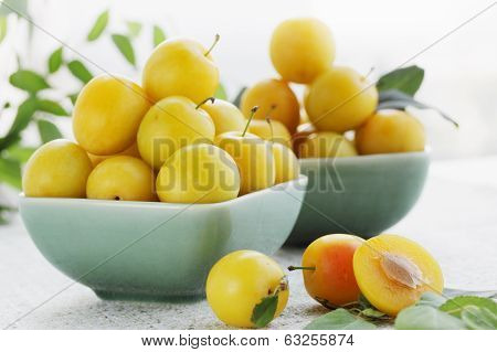 yellow plums, summer still life