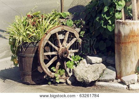 Rural Scene With Plants And Wooden Wheel