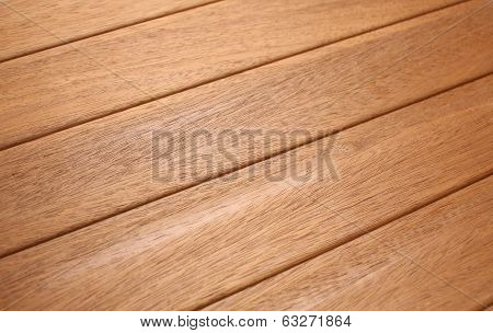 Teak Tree Wood Pattern