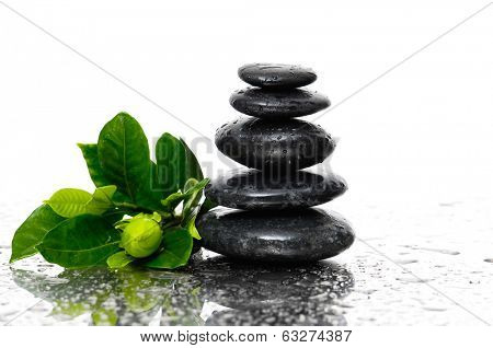 Spa Background with gardenia flowers
