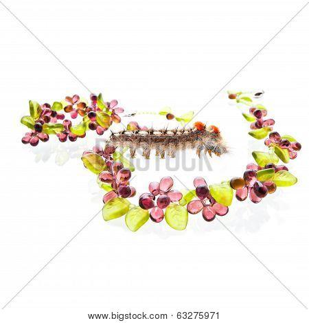 Caterpillar With The Friuty Glass Jewelry