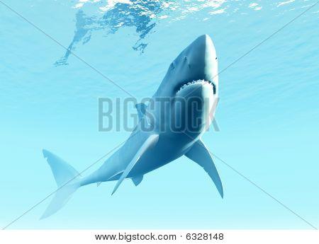 Submarino tubarão