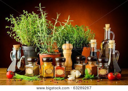 Still Life With Herbs And Spices