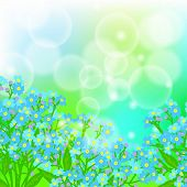 stock photo of forget me not  - Vector floral spring background with drawings of a field of small blue flowers known as forget - JPG