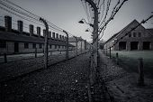 picture of nazi  - Electric fence in former Nazi concentration camp Auschwitz I - JPG