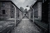 stock photo of auschwitz  - Electric fence in former Nazi concentration camp Auschwitz I - JPG