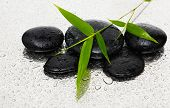 Spa still life with black stones and bamboo leafs