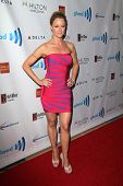 LOS ANGELES - APR 12:  Teri Polo at the GLAAD Media Awards at Beverly Hilton Hotel on April 12, 2014