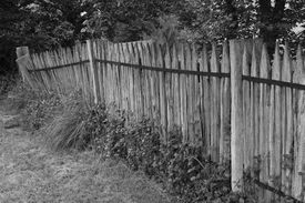 stock photo of toples  - Rustic old paling fence which is falling over - JPG