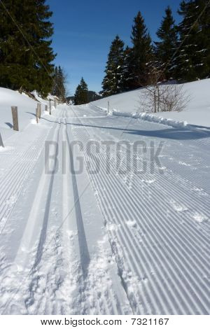 Lines For Cross Country Skiing