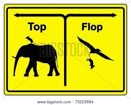 Top Or Flop