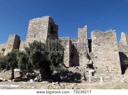 Castle Bechin in Milas Turkey
