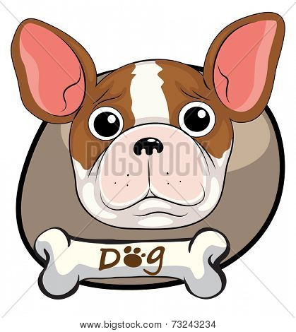 Illustration of a head of a frightened dog on a white background