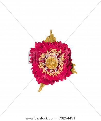 Artificial red flower of silk.