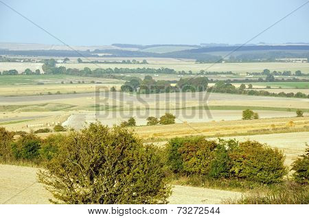 The Ridgeway From Charlbury Hill