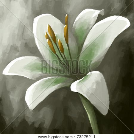 digital painting plant flower lily white bloom