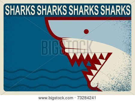 Shark Poster.vector Background Illustration For Design