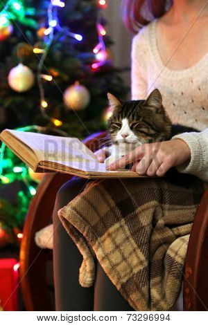 Woman and cute cat sitting on rocking chair and read the book, in the front of the Christmas tree