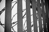 stock photo of stockade  - Detail of a safety fence in dramatic ambiance - JPG