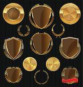 foto of laurel  - Golden shields - JPG