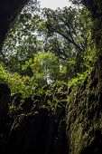 pic of gunung  - Cave in the Gunung Mulu National Park Borneo Malaysia
