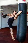stock photo of kickboxing  - Kickboxer training in the gym kicking the punch bag - JPG