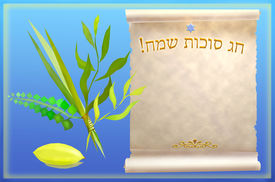 foto of sukkoth  - palm - JPG