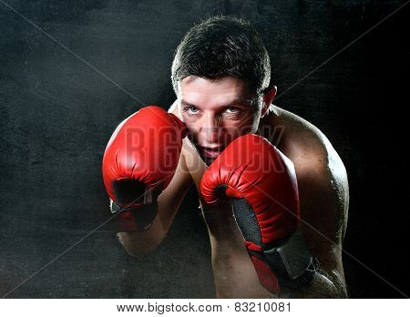 Young Angry Fighter Man Training Boxing In Red Fighting Gloves In Boxer Stance