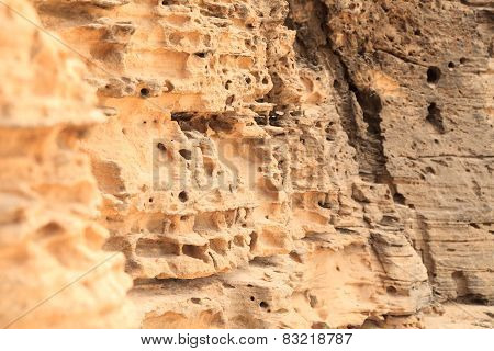 Close-up of rock boavista Cape Verde - cabo verde