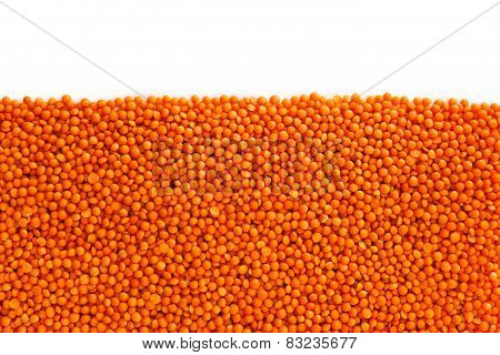 Red Lentils , Isolated