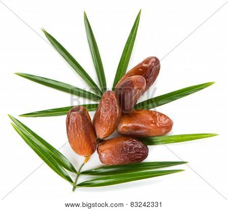 Date Fruits And Leaf Of Palm, Top Wiew