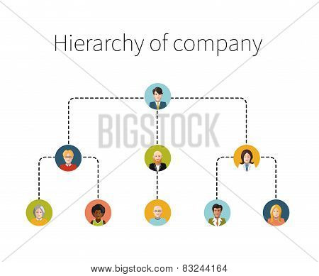 Hierarchy of company flat illustration isolated