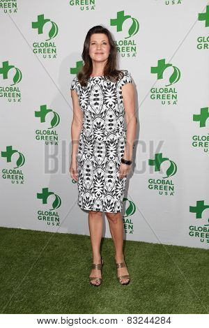 LOS ANGELES - FEB 18:  Daphne Zuniga at the Global Green USA's 12th Annual Pre-Oscar Party at a Avalon on February 18, 2015 in Los Angeles, CA