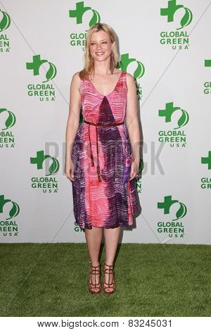 LOS ANGELES - FEB 18:  Amy Smart at the Global Green USA's 12th Annual Pre-Oscar Party at a Avalon on February 18, 2015 in Los Angeles, CA