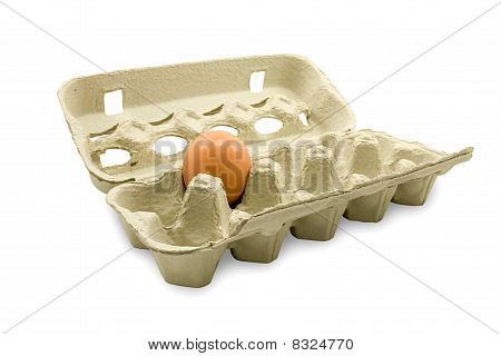 open eggs cardboard with one egg