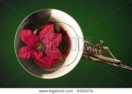 Red Flower On French Horn