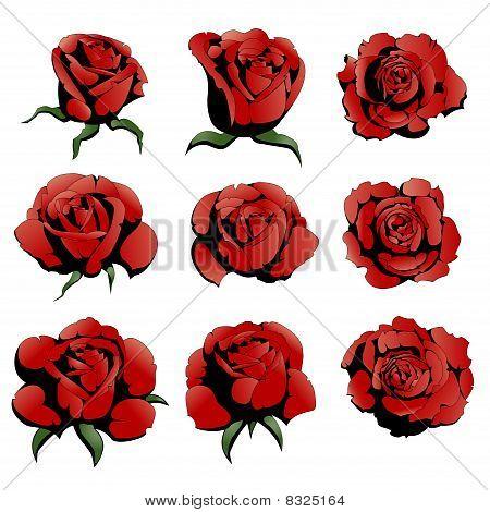 nine red roses