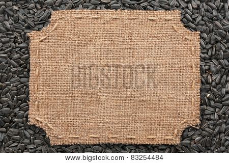 Figured Frame With Burlap And Stitches With  Place For Your Text Lying On Sunflower Seeds
