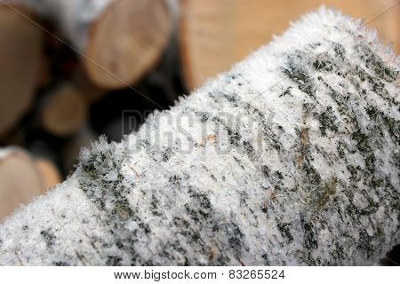 Fire Wood Covered By Hoar-frost