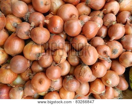 Onions In A Pile